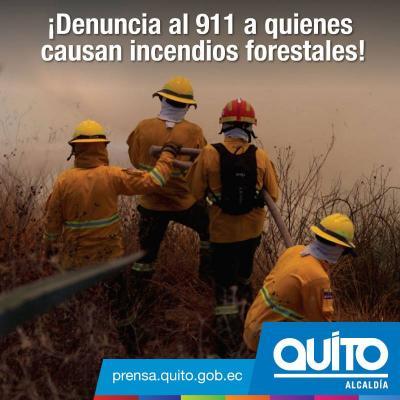 20150915173839-denuncia-los-incendios.jpg